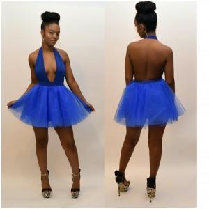 SKATER BARBEE BLUE TULLE DRESS