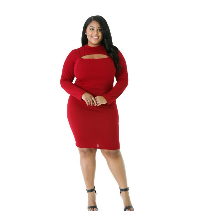 ROUND NECK LONG SLEEVE PLUS SIZE DRESS